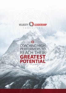 Download Velocity Leadership Consulting Brochure